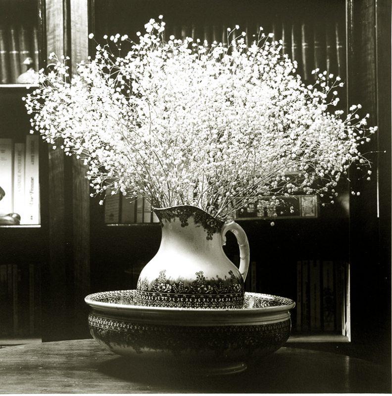 Fleurs pots de chambre